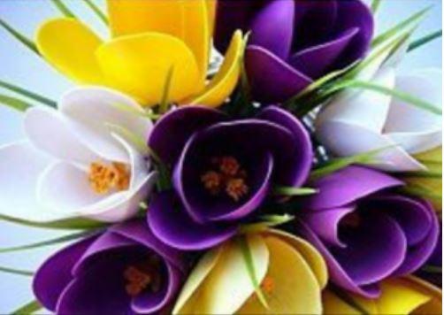 cách làm hoa tulip bằng thìa nhựa