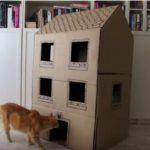 Hướng dẫn làm nhà cho mèo bằng thùng carton