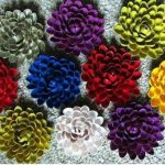 Hướng dẫn làm hoa đơn giản từ những vỏ hạt dẻ
