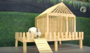 cách làm nhà cho thỏ bằng que kem gỗ