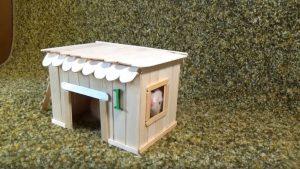 cách làm nhà hamster