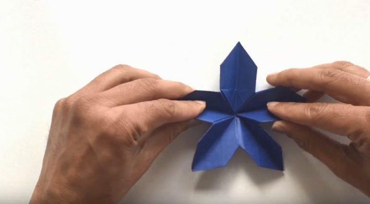 hướng dẫn làm hoa 5 cánh